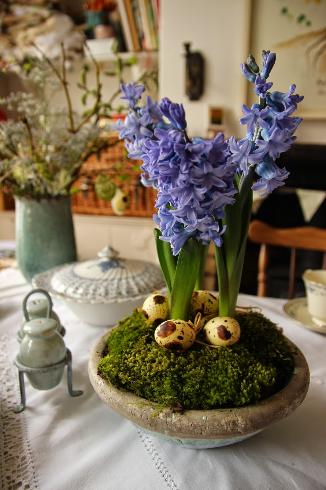Hyacinths flower display
