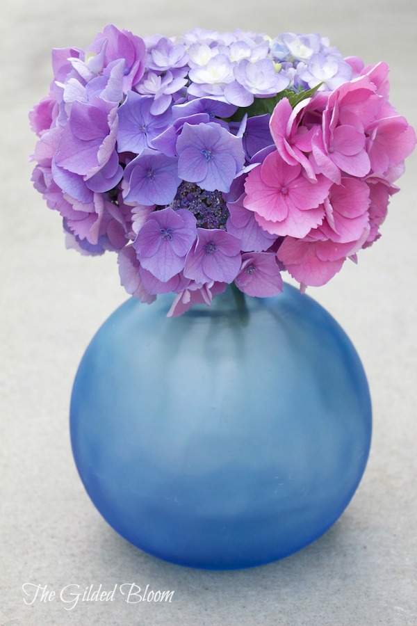 Hydrangeas in Blue Beach Glass Vase- www.gildedbloom.com