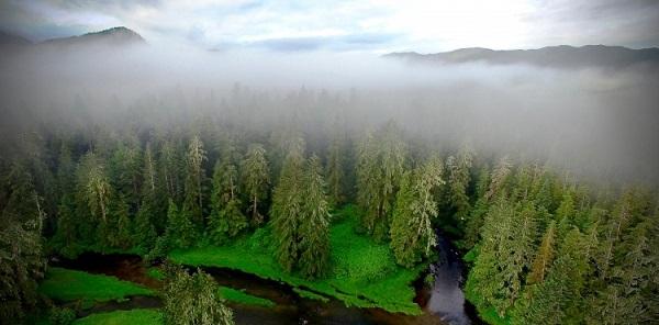Pendant 13000 ans, les bienfaits des Premières Nations sur l'environnement