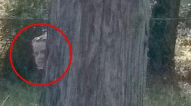 Buka Google Maps di Pemakaman, Pria Temukan Sosok Tak Terduga, Ternyata...