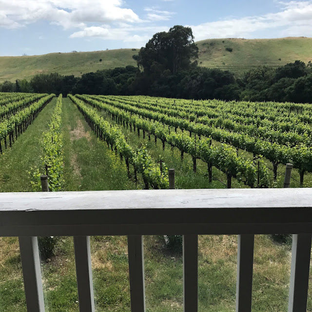 wineries united states | Kentucky wineries | California wineries | wine tours in united states | american wine tours | Oregon wineries | New York wineries