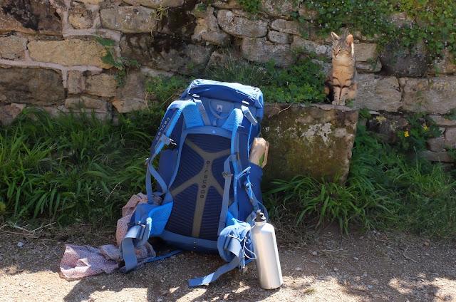 http://www.lilikus.be/2016/07/le-chemin-de-saint-jacques-de.html