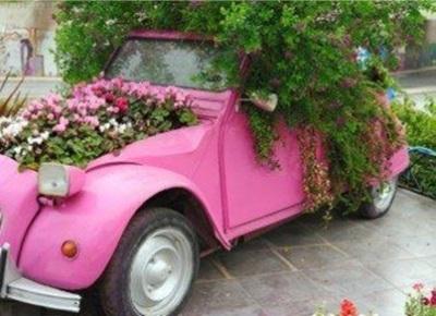 Berkebun di mobil atau mendaur ulang mobil bekas jadi pot bunga adalah ide yang sangat mahal.
