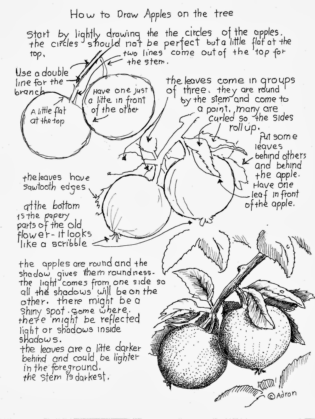 How To Draw Worksheets For The Young Artist How To Draw Apples On The Tree Worksheet