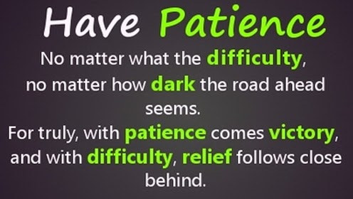 patience success quotes