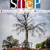 Περιοδικό Step: Δείτε τα περιεχόμενα του τεύχους Φεβρουαρίου