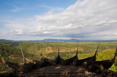 Geoforest Watu Payung Turunan Gunungkidul