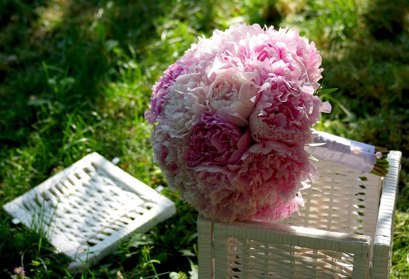 floralstudiobrasov.blogspot.com