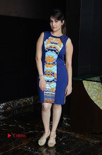 Actress Anchor Manjusha Pictures in Blue Short Dress at Jaguar Movie Success Meet  0162.jpg