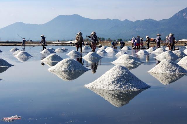 The salt fields near Van Phong Bay, Khanh Hoa province 10