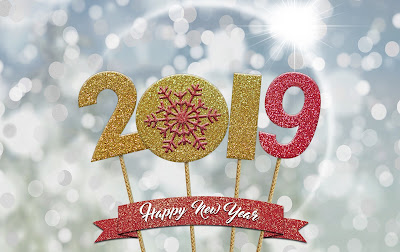 Trip down 2018 and Happy New Year 2019 from NWoBS Blog
