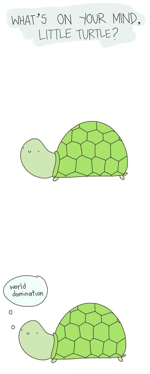 Hilarious Turtle World Domination Cartoon Image