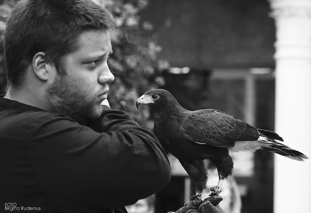 The Falconer and his hawk