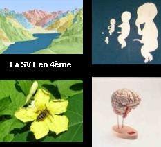 SVT 4ème
