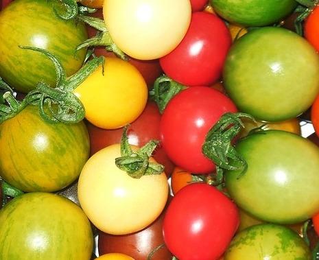 방울토마토 칼로리 및 영양소