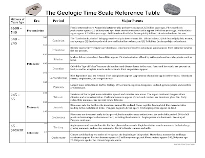 Amy Brown Science Evolution And The Geologic Time Scale