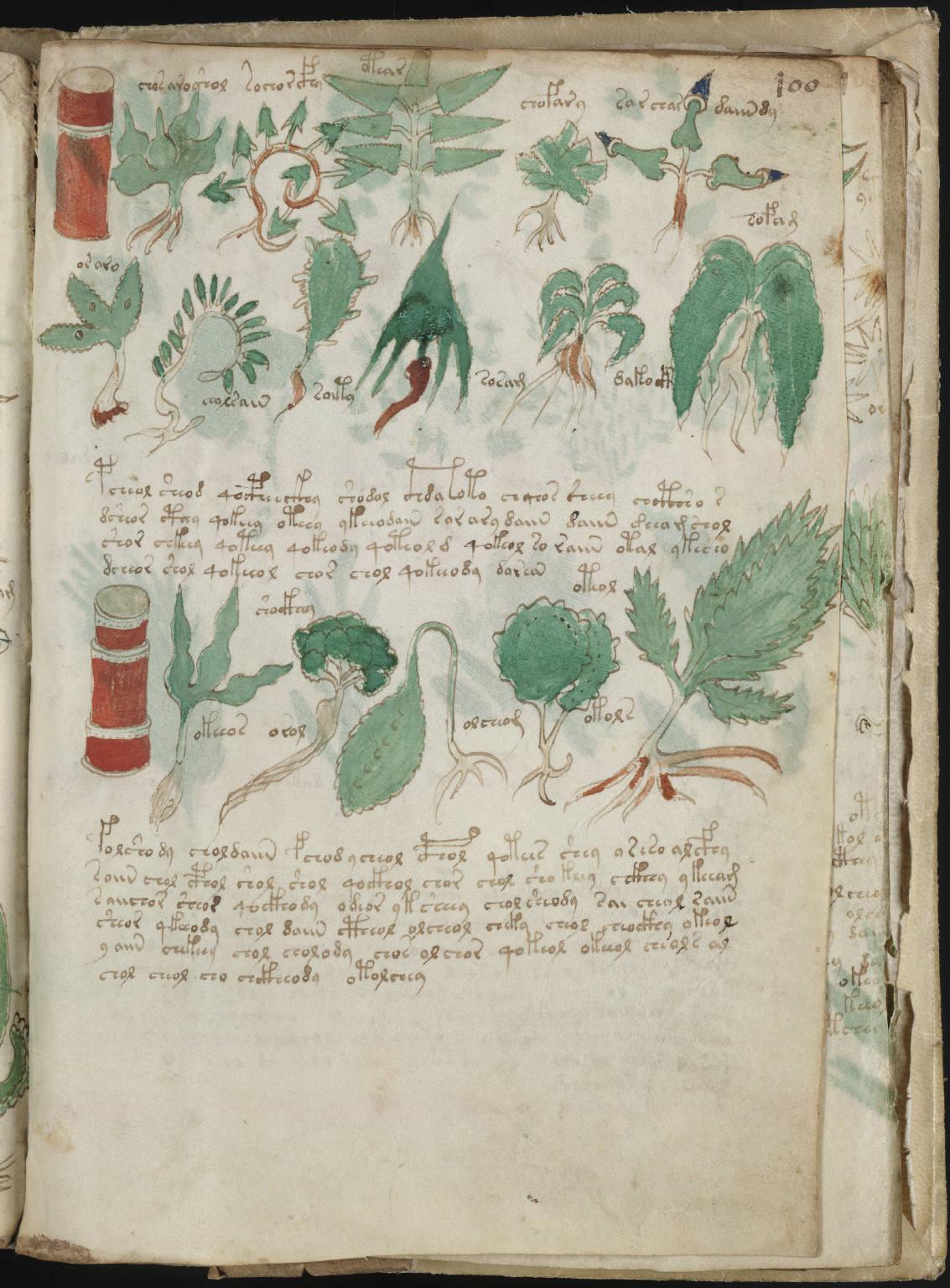 manuscrito216
