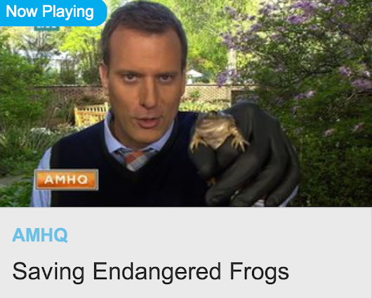 Atlanta Botanical Garden's Frog Blog: The Garden and our Amphibian Conservation Program featured on the Weather Channel