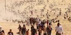 crisi migratoria