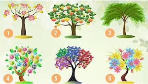 Hanya dengan 6 Gambar Pohon Berikut Bisa Tes Kepribadian, Cek Kamu yang Mana?