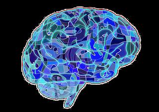 Cara Kerja dan Keajaiban Otak Manusia