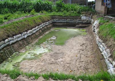 Mepersiapkan kolam ikan dari tanah - pustakapengetahuan.com