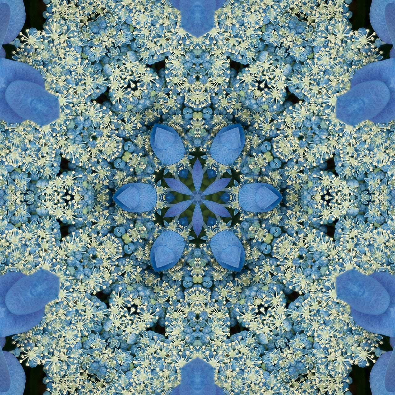 Kaleidoscope H5 by Jeanne Selep