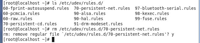 persistent-net.rules