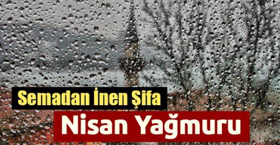 Nisan Yağmurlarının Şifası