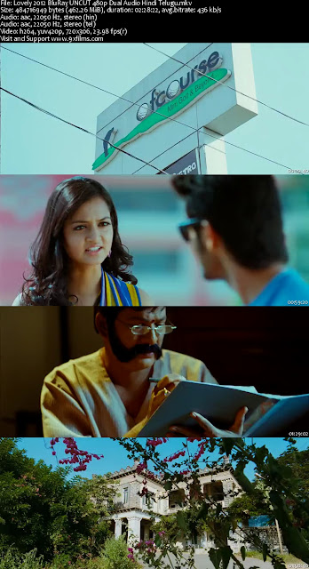 Lovely 2012 BluRay 480p Dual Audio Hindi