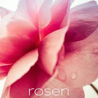 https://isabelle-fotografiert.blogspot.com/2017/07/rosenfest-in-arcen.html
