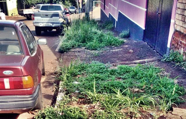 A cidade de Nova Cantu e as calçadas ecológicas