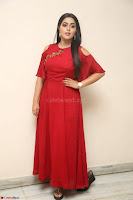 Poorna in Maroon Dress at Rakshasi movie Press meet Cute Pics ~  Exclusive 155.JPG