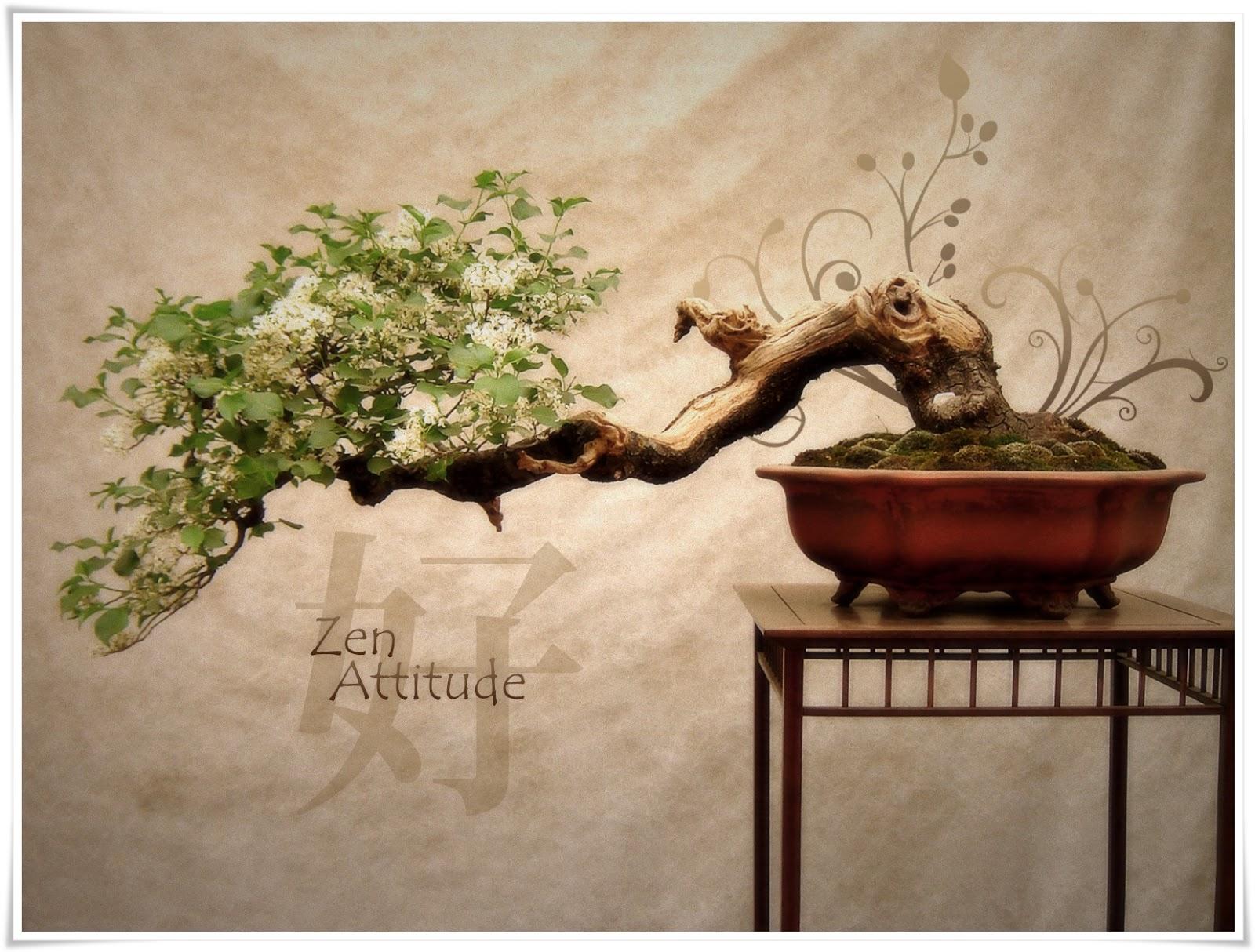 Decoração Zen ~ Decoraç u00e3o Zen Estilo que inspira harmonia, paz e tranquilidade! Portal da Mulher