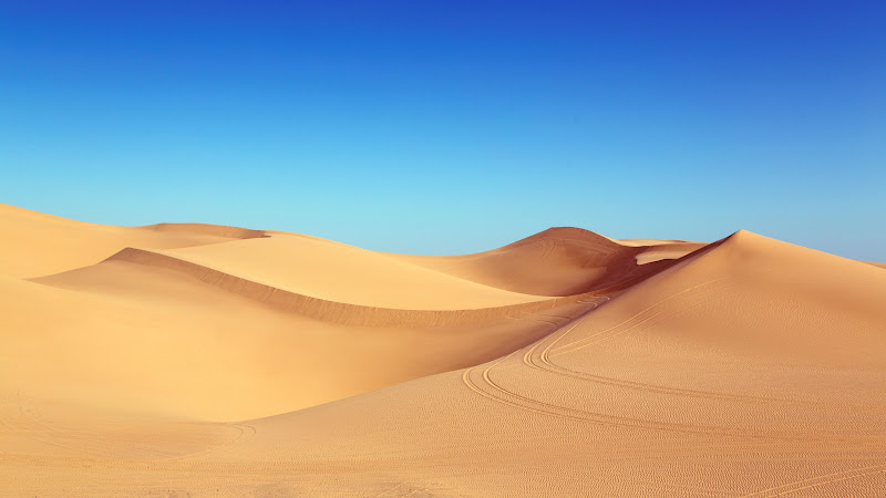 Blue Sky and Desert Dunes