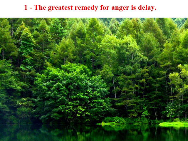 """Anger"" Quotes"