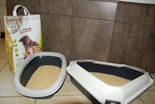 Kukurydziany żwirek dla kotów Benek corn