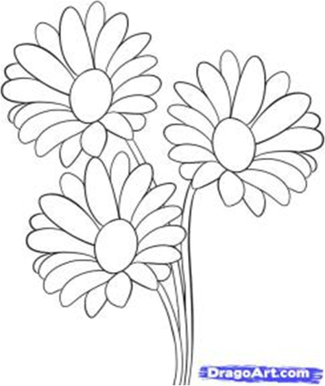 Cara Menggambar Bunga Matahari Step By Step Seni Rupa