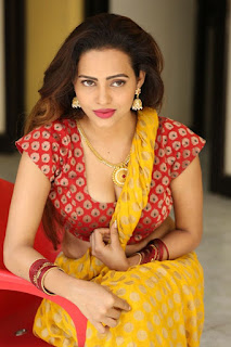 Geetha Shah Looks In Saree 35