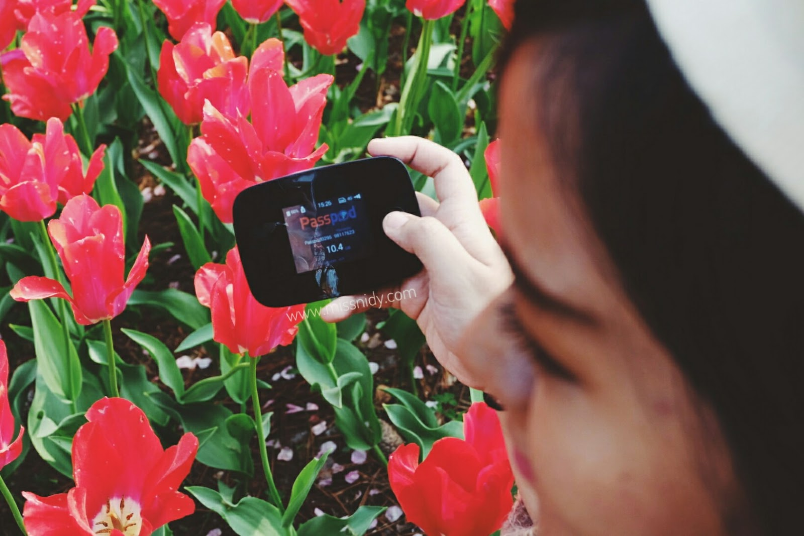 sewa wifi murah ke luar negeri