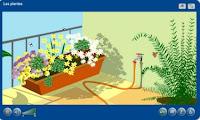 http://www.juntadeandalucia.es/averroes/~41010061/WEB%20JCLIC2/Agrega/Medio/Las%20plantas/contenido/