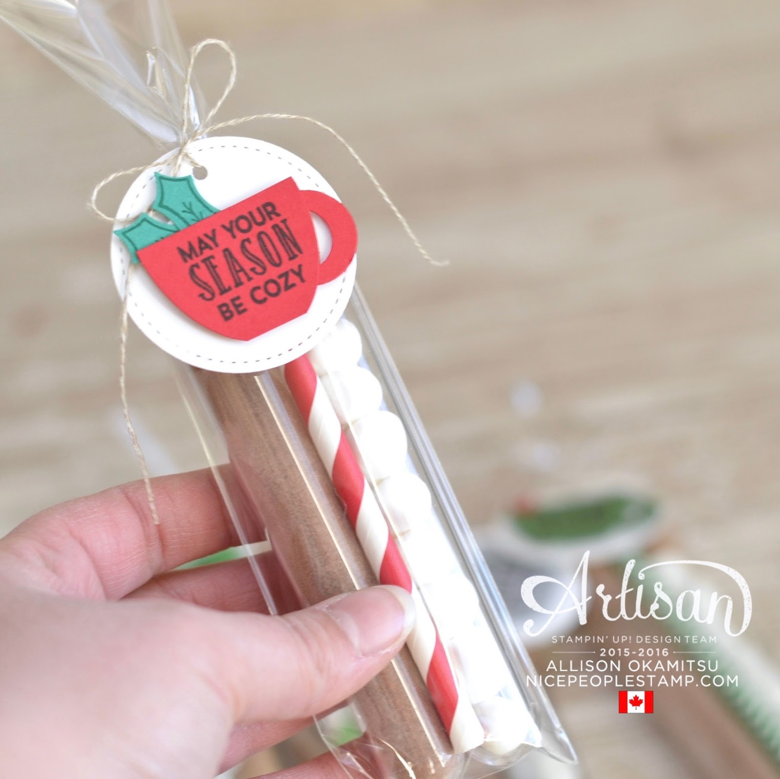 Nice people stamp test tube hot chocolate giftables for Test tubes for crafts