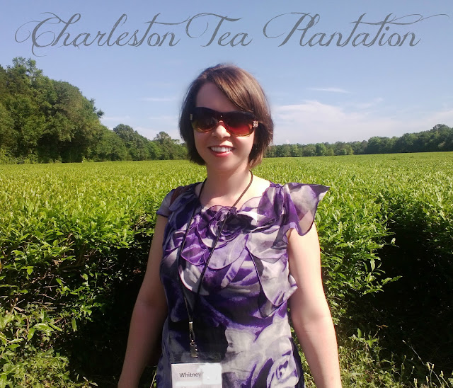 What I Wore to the Charleston Tea Plantation