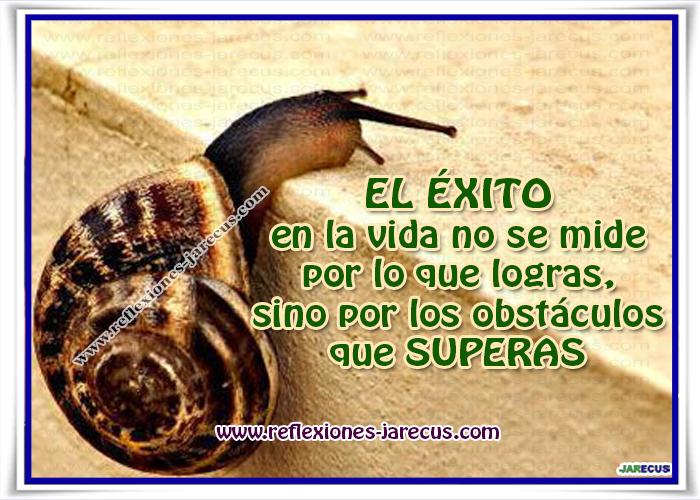 EL ÉXITO en la vida no se mide por lo que logras, sino por los obstáculos que SUPERAS.