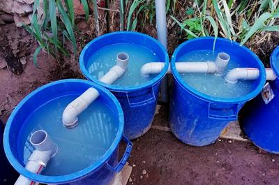 Estudiantes reciclan agua para generar alimentos