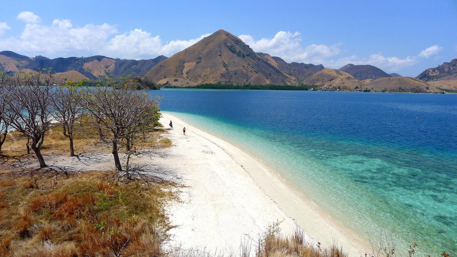 Open Trip Seruuuuuuuuuuu Sailing Komodo Start Lombok 4h3m Dari Labuan Bajo Kelor Kita Melanjutkan Ke Yang Merupakan Akhir Perjalanan Di Anda Bisa Tinggal Kapal Atau Mencari Akomodasi Sendiri