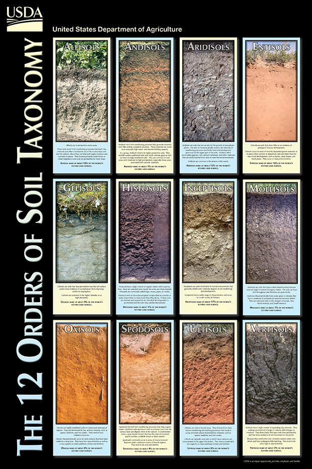 Taksonomi Ordo Tanah Sistem USDA