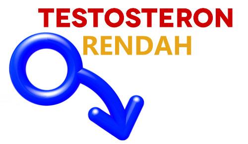 Testosteron rendah