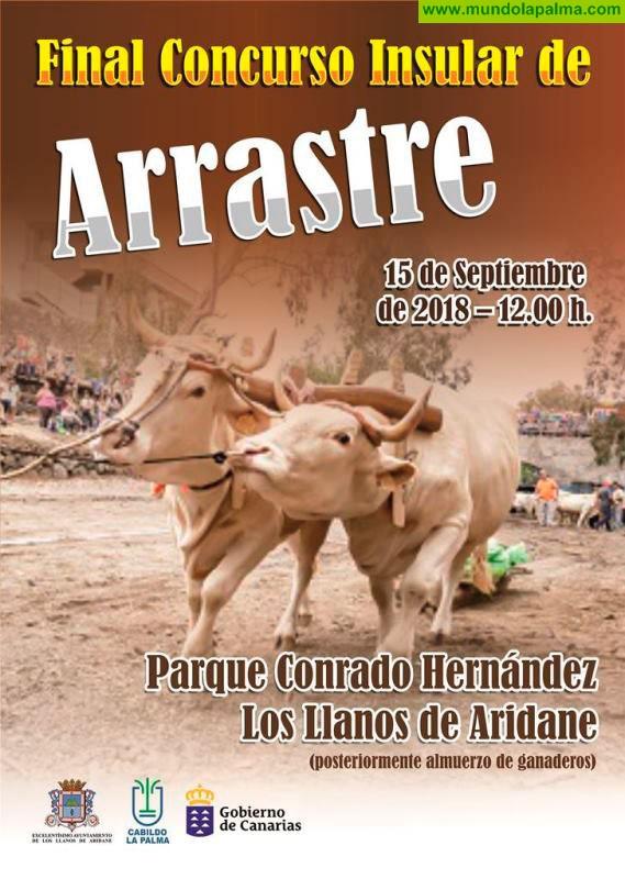 Los Llanos de Aridane acoge este sábado la Gran Final del Concurso Insular de Arrastre de Ganado