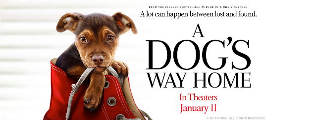 A Dog's Way Home Movie Release and Giveaway #ADOGSWAYHOME